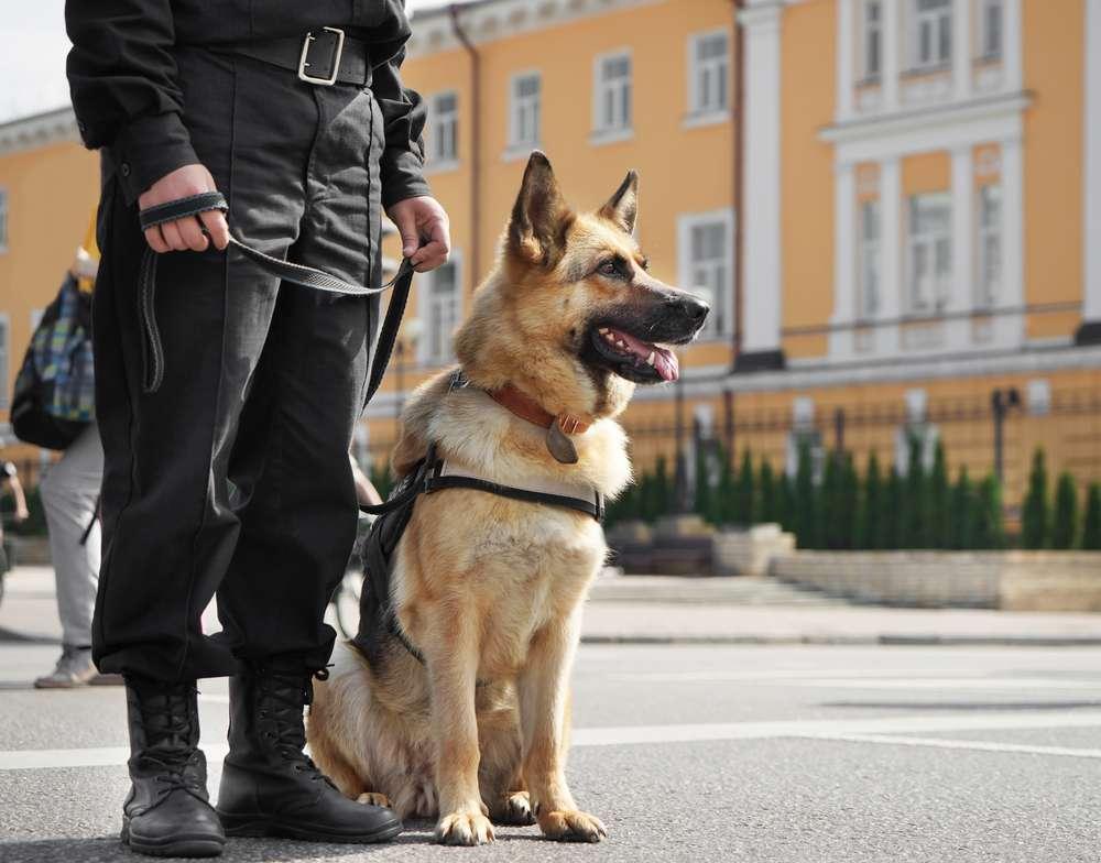 24-7 Sicherheit Bielefeld - Standwache